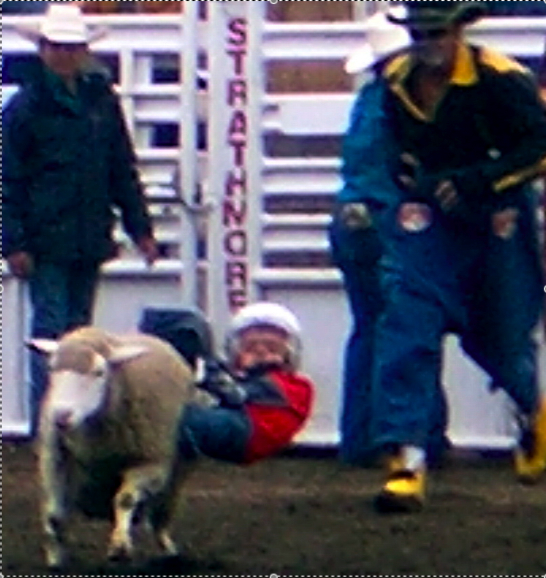 Colby Mutton Bustin