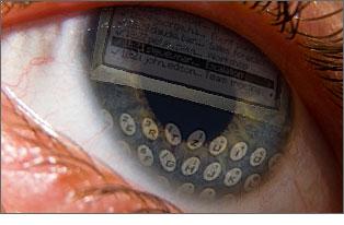 Blackberry_addiction_2